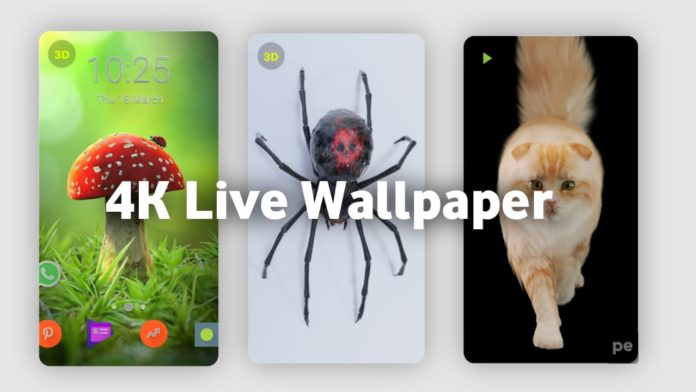 4K Live Wallpaper All Android Device App.