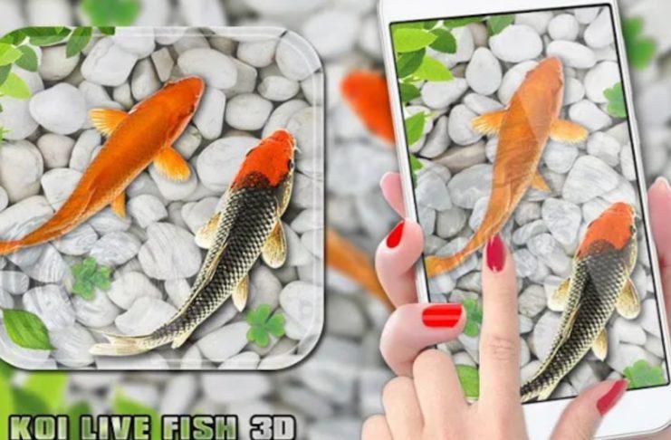 Fish Live Wallpaper 2020